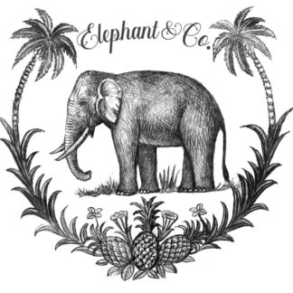 elephant and co